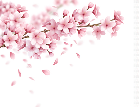 Ramifichi con i bei fiori di sakura e la composizione realistica dei petali di caduta sull'illustrazione bianca di vettore del fondo