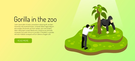 Visitor to zoo during photographing gorilla on yellow green background horizontal banner isometric vector illustration