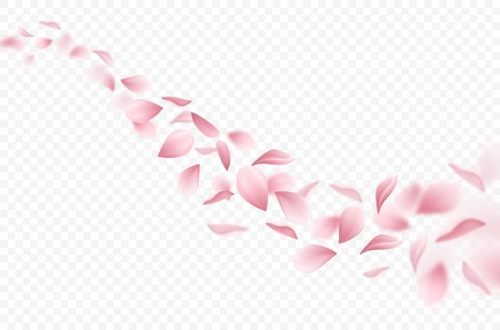Realistic flying sakura petals on transparent background vector illustration Stock Illustratie