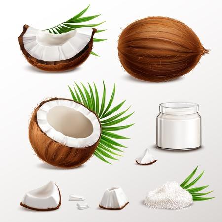 Kokosnuss realistisches Set mit Nusssegmenten Fleischstücken Glas Milchpulver Trockenflocken Palmblätter Vektor-Illustration Vektorgrafik