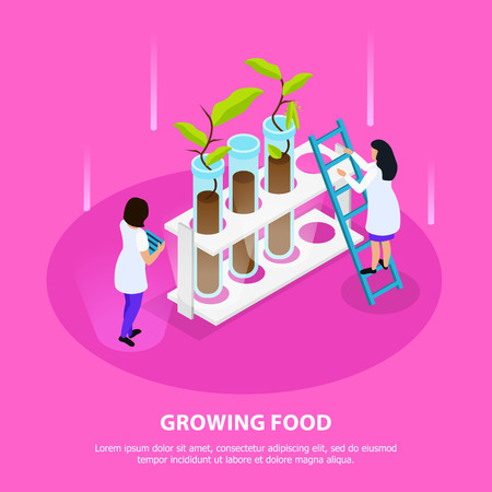 Growing of artificial food isometric composition with sprouts in laboratory beakers on pink background vector illustration Çizim