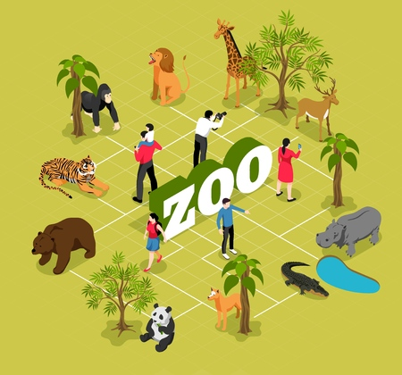 Zoo isometric flowchart with animals near trees and pool and visitors on olive background vector illustration