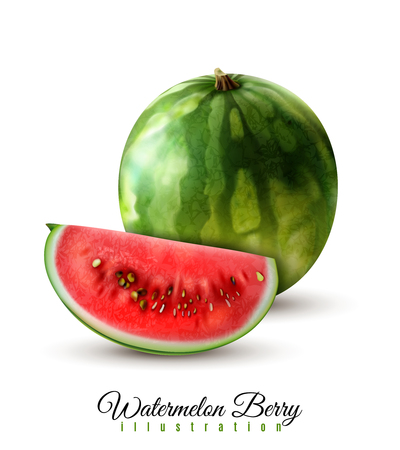 Ripe realistic whole watermelon and quarter berry wedge image against white background shadow beautiful lettering  vector illustration Иллюстрация
