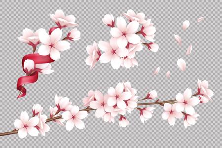 Przezroczyste tło z realistycznymi kwitnącymi kwiatami wiśni i ilustracją wektorową płatków