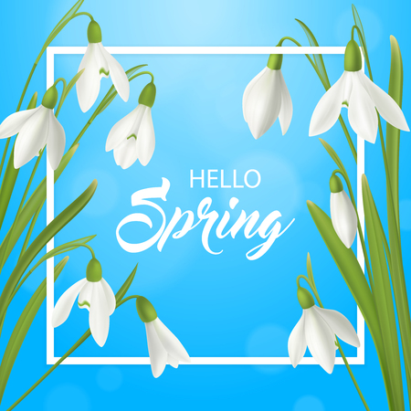 Realistic snowdrop flower hello summer poster background with flat frame ornate text and natural spring flowerage vector illustration