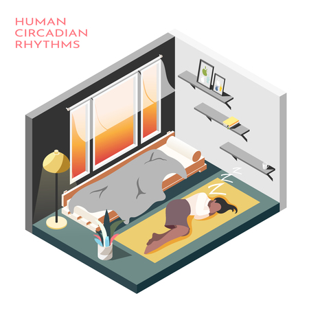 Human circadian rhythms isometric composition with room where business woman sleep on the floor vector illustration