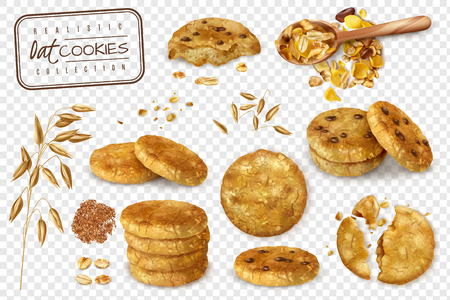 Realistic collection of oat cookies whole and halves isolated on transparent background  vector illustration  イラスト・ベクター素材