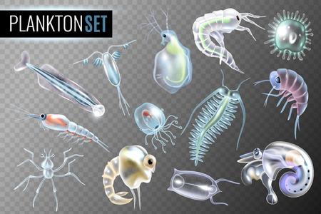 Plankton transparent set of daphnia amphipod  krill copepod phytoplankton underwater inhabitants isolated vector illustration Çizim