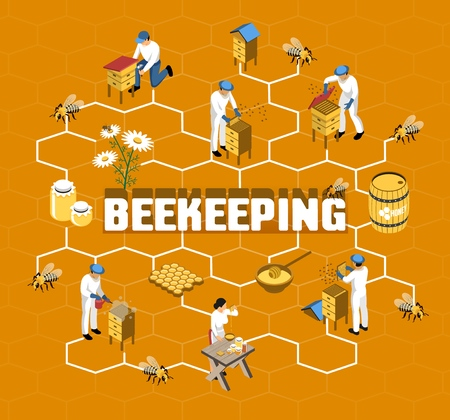 Beekeeping isometric flowchart with farmers in protective clothing during honey production on orange background vector illustration Illustration