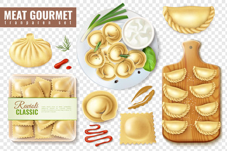 Set of realistic meat gourmet food on transparent background with isolated images of dumplings and ravioli vector illustration