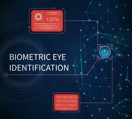 Biometric eye identification abstract background illustrated providing protection using identification by eye iris vector illustration