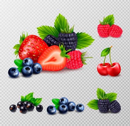 Realistisches Set der Beerenfrucht mit Trauben von reifen Beeren und grünen Blättern auf transparenter Hintergrundvektorillustration