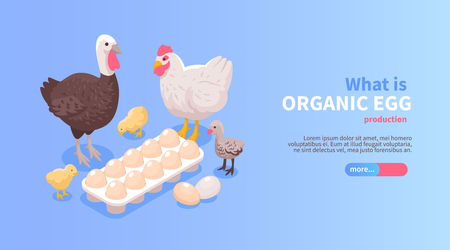 Poultry farm production isometric horizontal website banner design with organic eggs chicken turkey meat offer Illustration