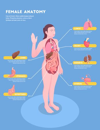 Female anatomy isometric info graphics with woman body and internal organs