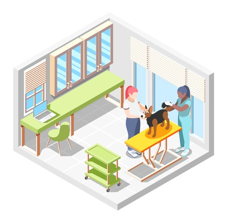 Ordinary life of man and his dog isometric composition with veterinary room and doctor check of dogs health vector illustration