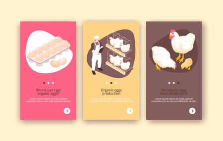 Organic eggs and chicken meat production 3 isometric vertical poultry farm colorful background banners isolated vector illustration