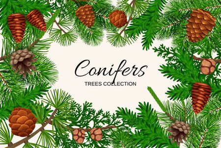 Pine tree cone frame composition with empty space for ornate text surrounded by fir needle images vector illustration