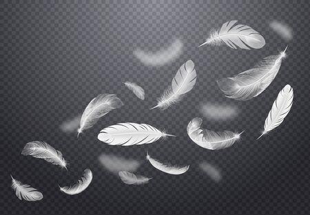 Conjunto de plumas de pájaro blancas que caen sobre fondo transparente oscuro en la ilustración de vector de estilo realista