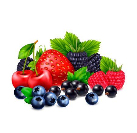 Realistische Zusammensetzung der Beerenfrucht mit Ansammlung verschiedener realistischer Bilder der Beeren mit Schatten auf leerer Hintergrundvektorillustration