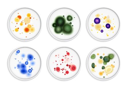 Mold fungus bacteria colony spots realistic set with round images of different moldiness lifeforms in colour vector illustration Ilustração