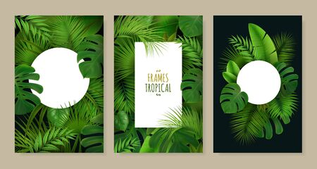 Realistic set of three frames of different shape decorated with tropical green leaves isolated vector illustration