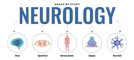 Neurology composition with editable text dashed lines and round images with elements of human nervous system vector illustration