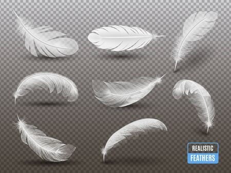 Isolated white feathers casting shadow on transparent background realistic set monochrome vector illustration