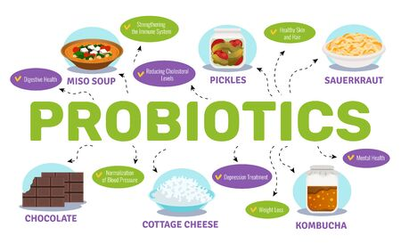 Probiotics and health concept with food and bacteria symbols flat vector illustration Illustration
