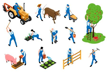 Farmers duties isometric icons set with dairy livestock breeding feeding pig harvesting orchard planting seedlings vector illustration