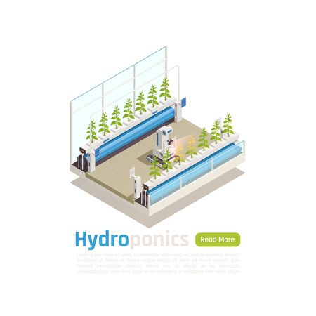 Modern hydroponic and aeroponic gardening isometric composition with automated greenhouse planten beds robotic control promotion vector illustration