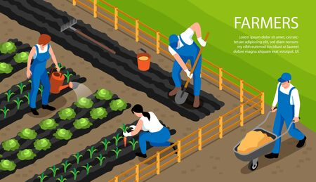 Farmers at work watering harvesting crops Imagens - 129443843