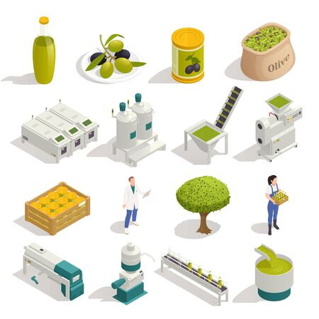 Olive production isometric icons set with fruit harvesting oil extraction filling  packaging automated line isolated vector illustration