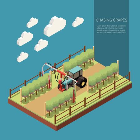 Chasing grapes in vine yard isometric composition with embossing machine in work process vector illustration