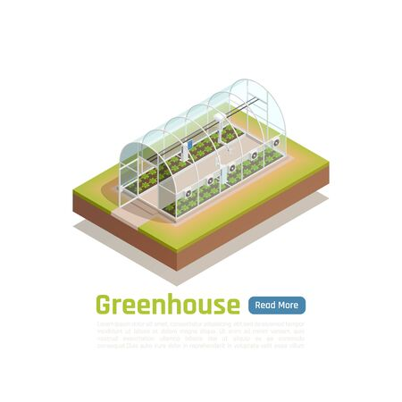Modern greenhouse smart hydroponic platen grow trays technology with embedded climate control system outdoor isometric view illustration