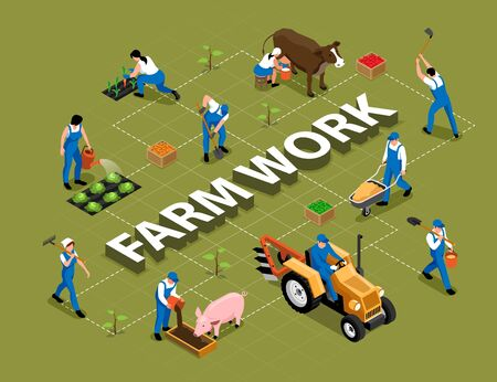 Farm work agricultural duties tools machinery isometric flowchart with milking cow feeding pig harrowing soil vector illustration