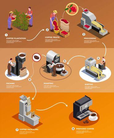 Production de l'industrie du café de la graine à la tasse affiche infographique isométrique avec traitement des grains récoltés emballage brassage illustration vectorielle