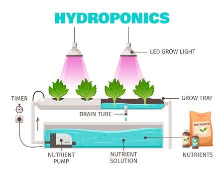Concepto de cultivo hidropónico con ilustración de vector de dibujos animados de símbolos de ahorro de agua vertical