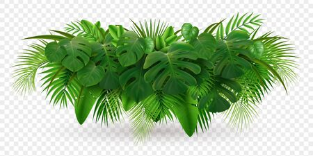 Tropical leaves palm branch realistic composition with image of green leaf pile isolated on transparent background vector illustration
