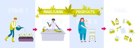 Colored marijuana production with marijuana product headlines and steps of drug manufacturing vector illustration