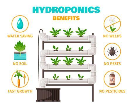 Concepto de beneficios hidropónicos con ahorro de agua y símbolos de crecimiento rápido ilustración vectorial de dibujos animados