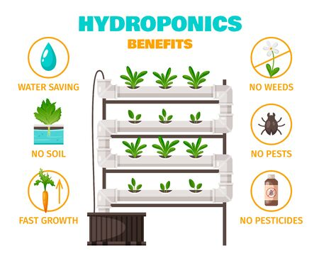 Hydroponics benefits concept with water saving and fast growth symbols cartoon vector illustration Illustration