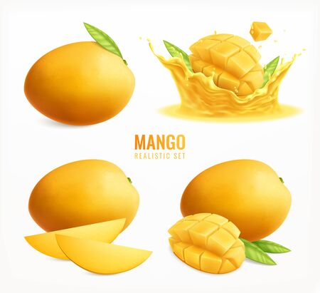 Mango set with realistic isolated images of whole ripe fruits with leaves and slices water splash vector illustration
