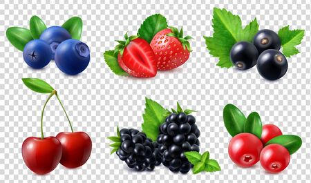 Berries icons set with cherry blueberry blackberry strawberry cranberry currant isolated on transparent background realistic vector illustration