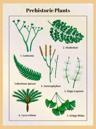 Prehistoric plants botanical set with text captions and isolated images of herbs inside the vertical frame vector illustration