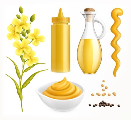 Mustard realistic set with colourful images of packaging with seeds and flower plants on blank background vector illustration