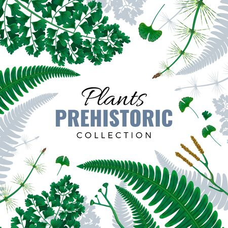 Prehistoric plants square frame with ferns fronds horsetail ginkgo leaves in green and silver gray vector illustration