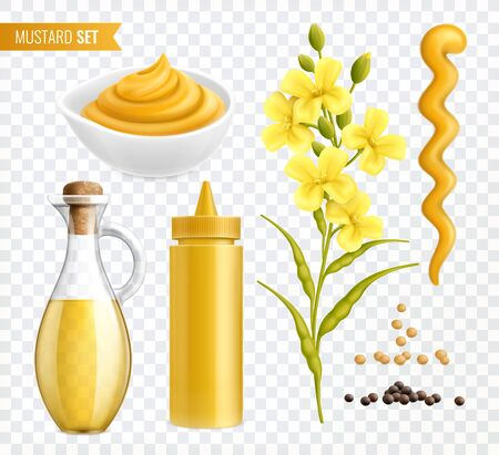 Mustard realistic set of isolated images on transparent background with plants seeds and jars with text vector illustration