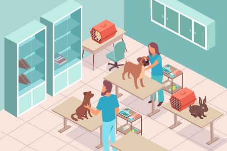 Vet clinic isometric composition with indoor view of veterinary hospital room with medical specialists and pets vector illustration