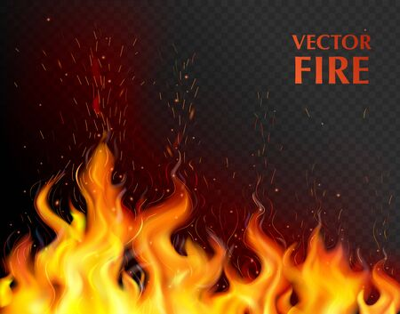 Orange and realistic fire flame background with open flame on black fond vector illustration