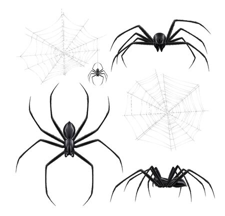 Black spiders realistic set with isolated images of spiderweb crackles and arthropod insects on blank background vector illustration Illustration